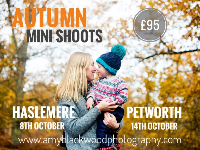 Autumn Mini Shoot advert 2017